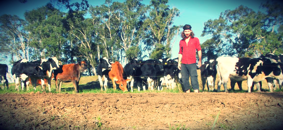 Work and travel in Australien - Farmjob