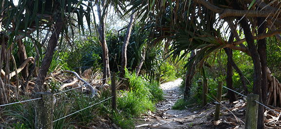 Work and travel in Australien - Byron Bay